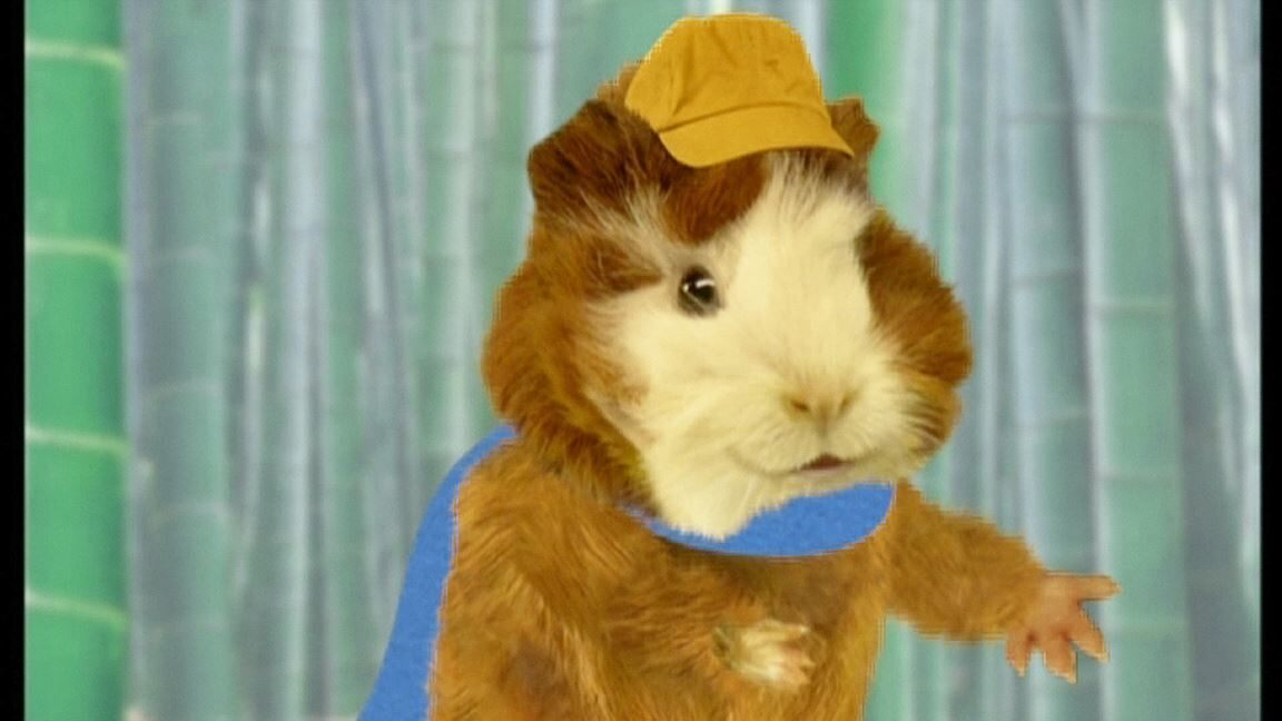 The Wonder Pets Save The Dog